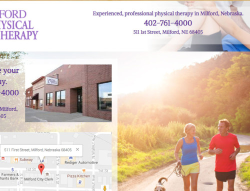Milford Physical Therapy – Milford, Web Design